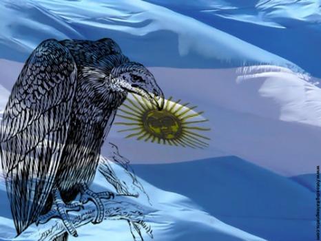 Argentina-BuitreFDG